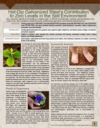 Zinc  In  Soil Thumb