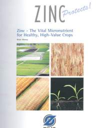 Zinc Vital Micronutrient For Crops